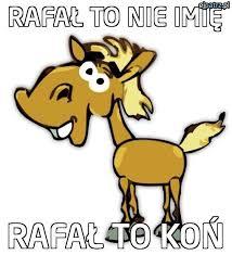 rafal3